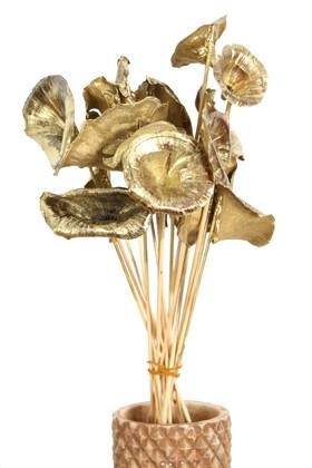 Yapay Çiçek Deposu - 15 Adet Kuru Golden Mushromm Bambu Çubuklu Gold