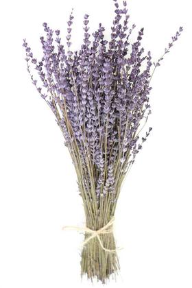 Yapay Çiçek Deposu - Şoklanmış Dökülmeye Dayanıklı Gerçek Lavanta Demeti Açık Mor (100 gr)