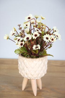 Yapay Çiçek Deposu - Ahşap Ayaklı Beton Saksıda Yapay Papatya Bahçesi 30 cm Krem