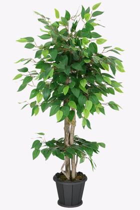 Yapay Çiçek Deposu - Ahşap Saksıda Yapay Benjamin Ağacı 100 cm Yeşil