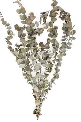 Yapay Çiçek Deposu - Şoklanmis Baby Blue Okaliptus Demeti Naturel(Büyük Demet)