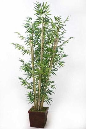 Yapay Çiçek Deposu - Bambu Ağacı 8 Gövde 180 cm(1.Sınıf Yaprak)