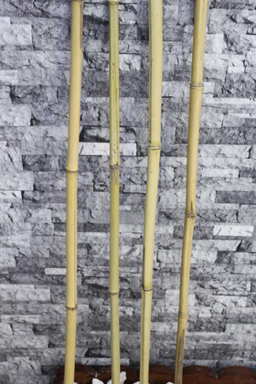 Yapay Çiçek Deposu - Doğal Gerçek Bambu 80 cm