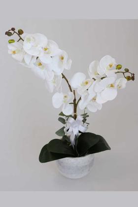 Yapay Çiçek Deposu - Beton Oval Saksıda 2li Islak Orkide Tanzimi Beyaz