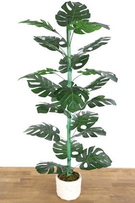 Yapay Çiçek Deposu - Beton Saksıda 21 Yapraklı Yapay Monstera (Deve Tabanı) Ağacı 110 cm