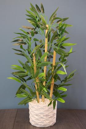 Yapay Çiçek Deposu - Beton Saksıda Bambu Ağacı Koyu Yeşil 65 cm (Taşlı Model)
