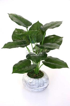 Yapay Çiçek Deposu - Beton Saksıda Difenbahya Bitkisi 40 cm Koyu Yeşil
