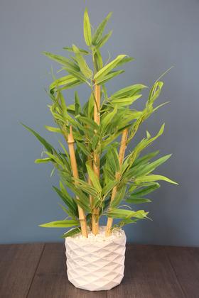 Yapay Çiçek Deposu - Beton Saksıda Lüx Bambu Ağacı Açık Yeşil 65 cm (Taşlı Model)