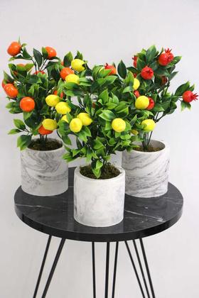 Yapay Çiçek Deposu - Beton Saksıda Mini Mandalina Limon ve Nar Ağacı 3lü Set