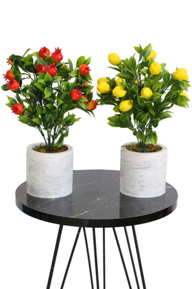 Yapay Çiçek Deposu - Beton Saksıda Mini Nar Ve Limon Ağacı 2li Set