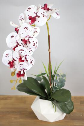Yapay Çiçek Deposu - Beton Saksıda Yapay Baskılı Islak Orkide 55 cm Bordo Benekli