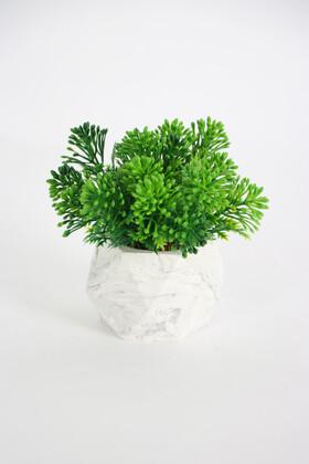 Yapay Çiçek Deposu - Beton Saksıda Yapay Pıtırcık Bitki Yeşil