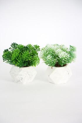 Yapay Çiçek Deposu - Beton Saksıda Yapay Pıtırcık Bitki 2li Set