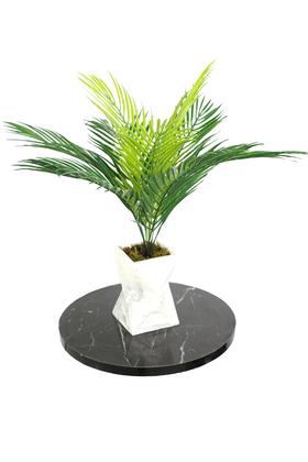 Yapay Çiçek Deposu - Beton Vazoda Islak Dokuda Fenix Hurma Bitkisi 50 cm