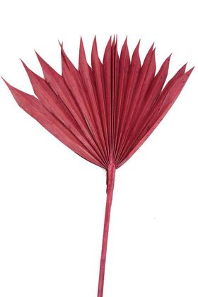 Yapay Çiçek Deposu - Kuru Tropic Palmiye Yaprağı 40 cm Bordo