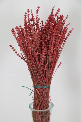 Yapay Çiçek Deposu - Şoklanmış Dökülmeye Dayanıklı Gerçek Lavanta Demeti Bordo (100 gr)