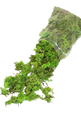 Yapay Çiçek Deposu - İthal Doğal Şoklanmış Teraryum Yosunu 150gr Koyu Yeşil