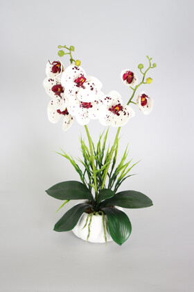 Yapay Çiçek Deposu - Dekoratif 2li Mini Yapay Islak Orkide Tanzimi 50 cm Beyaz Benekli