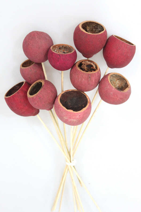 Yapay Çiçek Deposu - Dekoratif Bell Cup 10lu Doğal Kabak Pembe