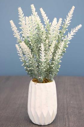 Yapay Çiçek Deposu - Beton Vazoda Yapay Pudralı Lavanta Beyaz 35 cm