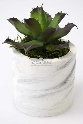 Yapay Çiçek Deposu - Beton Saksıda Islak Büyük Succulent Echeveria Setosa Siyah - Yeşil