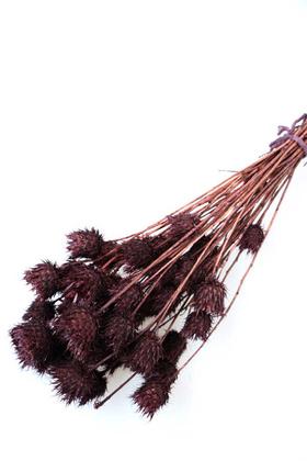 Yapay Çiçek Deposu - Kuru Çiçek Dikenli Çilek Demeti Kahverengi