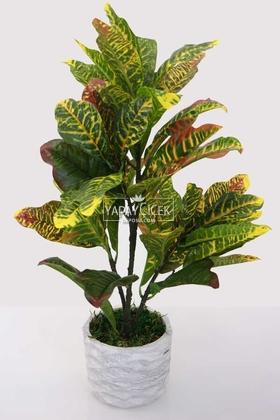 Yapay Çiçek Deposu - Beton Saksıda Yapay Lüx Büyük Kraton Bitkisi