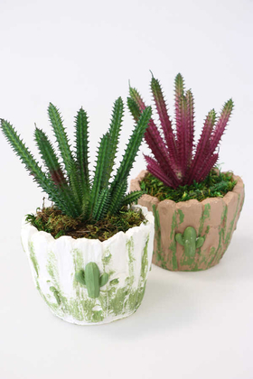 Yapay Çiçek Deposu - Tasarım Saksıda 2li Kaktüs Seti