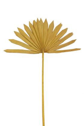 Yapay Çiçek Deposu - Kuru Tropic Palmiye Yaprağı 40 cm Hardal Sarı