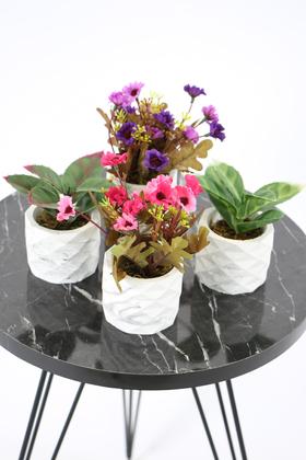 Yapay Çiçek Deposu - Beton Saksıda Yapay Bitki ve Papatya 4lü Set Model 5