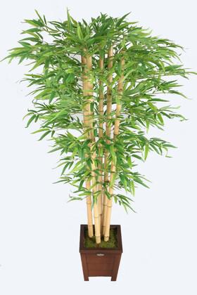 Yapay Çiçek Deposu - Kalın Çubuklu Kırçıllı Yapraklı Bambu Ağacı 5 Gövde 170 cm
