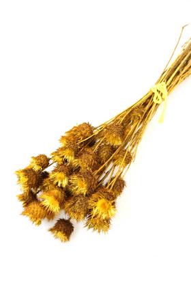 Yapay Çiçek Deposu - Kuru Çiçek Dikenli Çilek Demeti Sarı
