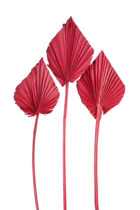 Yapay Çiçek Deposu - 3lü Kuru Tropic Palm Spear Bordo