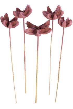 Yapay Çiçek Deposu - Tropic Bullet Flower Kuru Çiçek Tropik 5li Soft Pembe