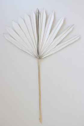 Yapay Çiçek Deposu - 4lü Kuru Tropic Palmiye Yaprağı 40 cm Retro Beyaz