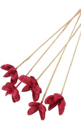 Yapay Çiçek Deposu - Tropic Bullet Flower Kuru Çiçek Tropik 5li Vişne Çürüğü
