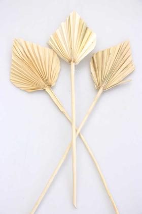 Yapay Çiçek Deposu - 3lü Kuru Tropic Palm Spear Beyaz