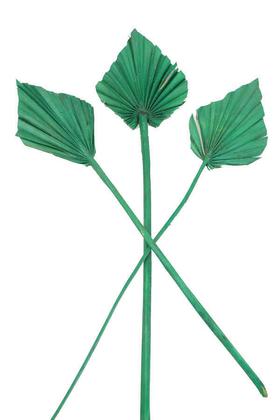 Yapay Çiçek Deposu - 3lü Kuru Tropic Palm Spear Yeşil