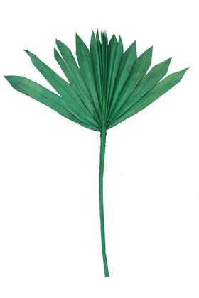 Yapay Çiçek Deposu - Kuru Tropic Palmiye Yaprağı 40 cm Yeşil