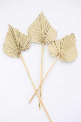 Yapay Çiçek Deposu - 3lü Kuru Tropic Palm Spear Naturel