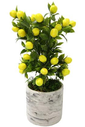 Yapay Çiçek Deposu - Handmade Beton Saksıda Yapay Limon Ağacı Uzun Model 40cm