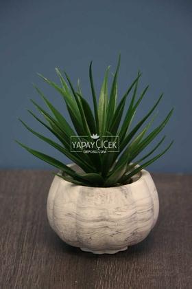 Yapay Çiçek Deposu - Succulentli Kabak Beton Saksı 20 cm
