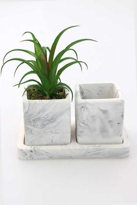 Yapay Çiçek Deposu - Kaktüslü Beton Saksı Kalemlik Siyah-Beyaz (Yapay Bitki Dahil)