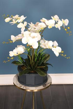 Yapay Çiçek Deposu - Dekoratif Ahşap Saksıda Orkide Tanzimi Beyaz