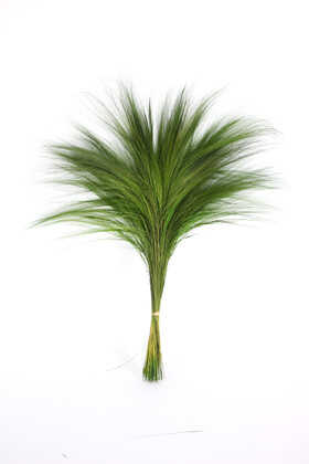 Yapay Çiçek Deposu - İspanyol Barba İpek Dokulu 75 cm Yeşil