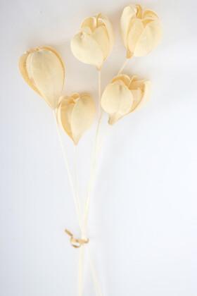 Yapay Çiçek Deposu - İspanyol Tropikal Rosa Tefe Krem