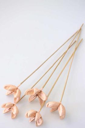 Yapay Çiçek Deposu - Tropic Bullet Flower Kuru Çiçek Tropik 5li Açık Somon