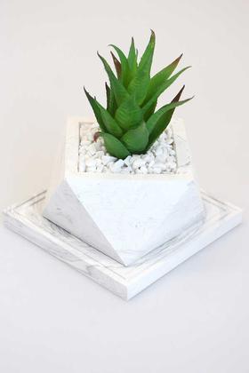 Yapay Çiçek Deposu - Altlıklı Beton Saksıda Kaliteli Yapay Succulent Kaktüs Set Yeşil