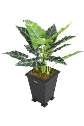 Yapay Çiçek Deposu - Yapay Alocasia Bitkisi Ahşap Konik Saksıda 85 cm Yeşil-Gri