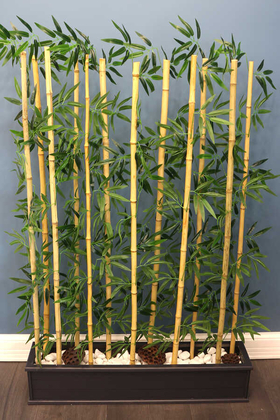 Yapay Çiçek Deposu - 12 Bambulu Ahşap Saksıda Bambu Seperatör (20x100x160cm)
